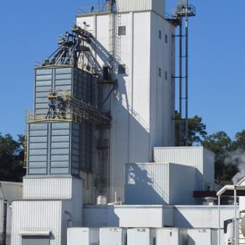 2010s-pf-plant-375x500