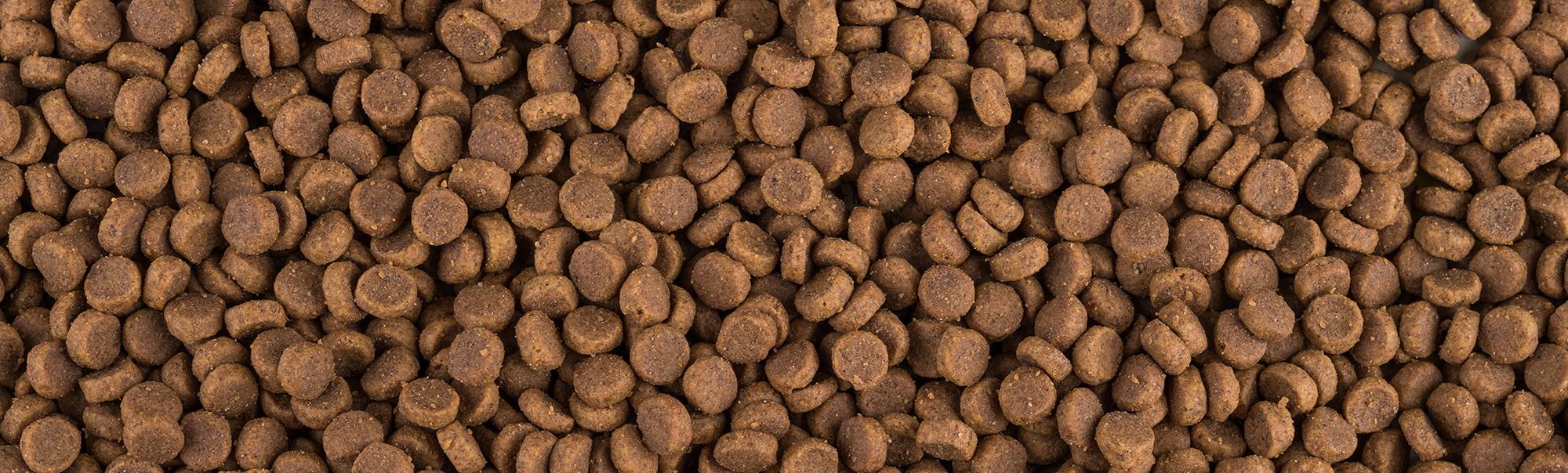Dry Pet Food